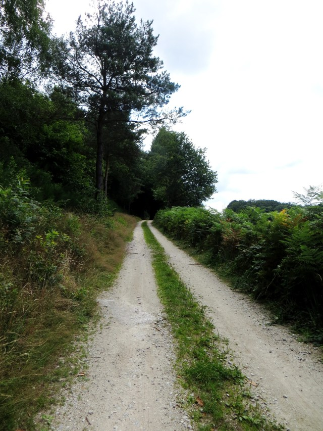 The GR46 out of Chauzeix