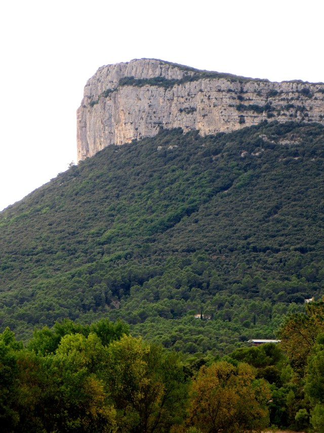 The cliffs of the Causse d'Orthus