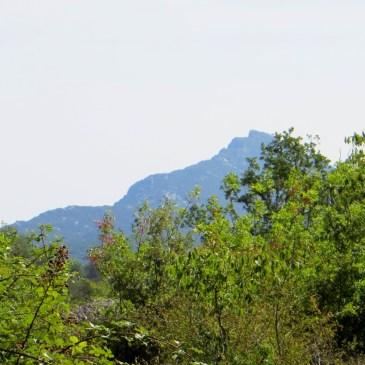 Travel in France – Walk at Viols le Fort