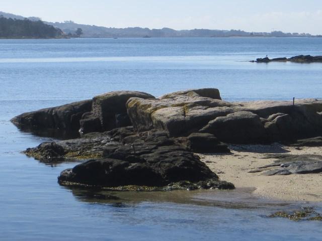Cambados Bay