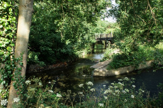 The confluence of the Pool and Ravensbourne Rivers