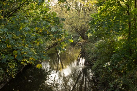 The Ravensbourne River in Ladywell Park