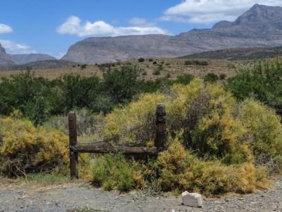 The Swartberg Mountains