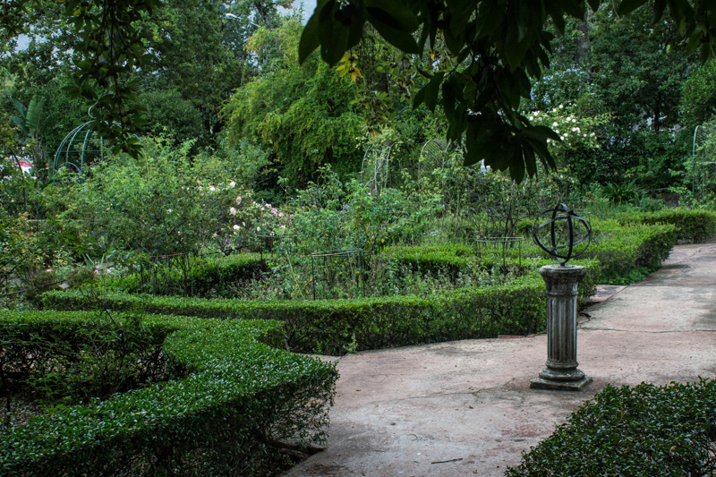 The garden at Mayville House, Swellendam