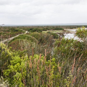 The De Hoop Nature Reserve