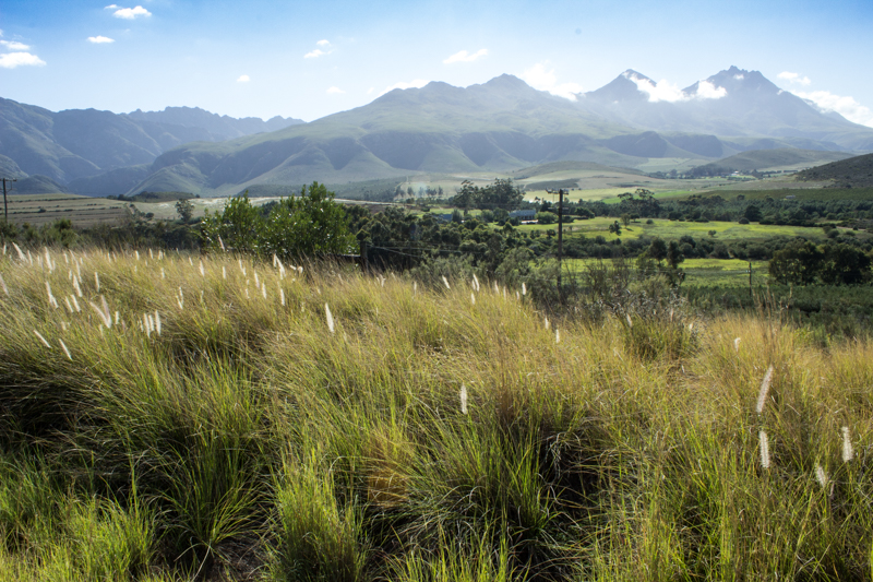 The Langeberg Mountains