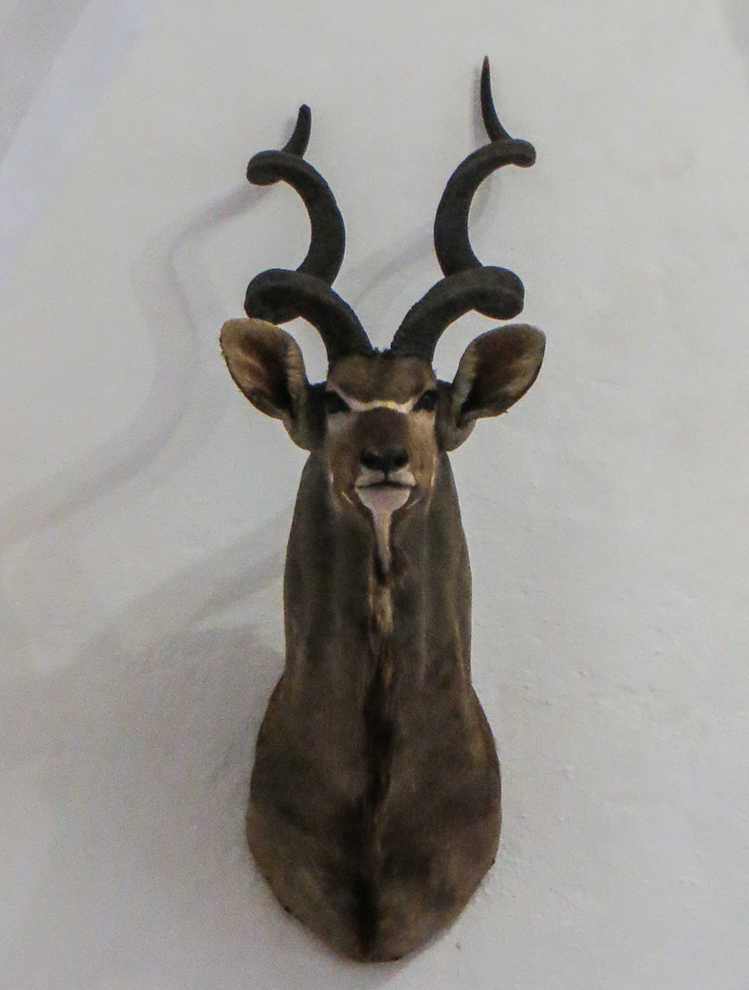 The Museum of the Hunt, Vila Vicosa