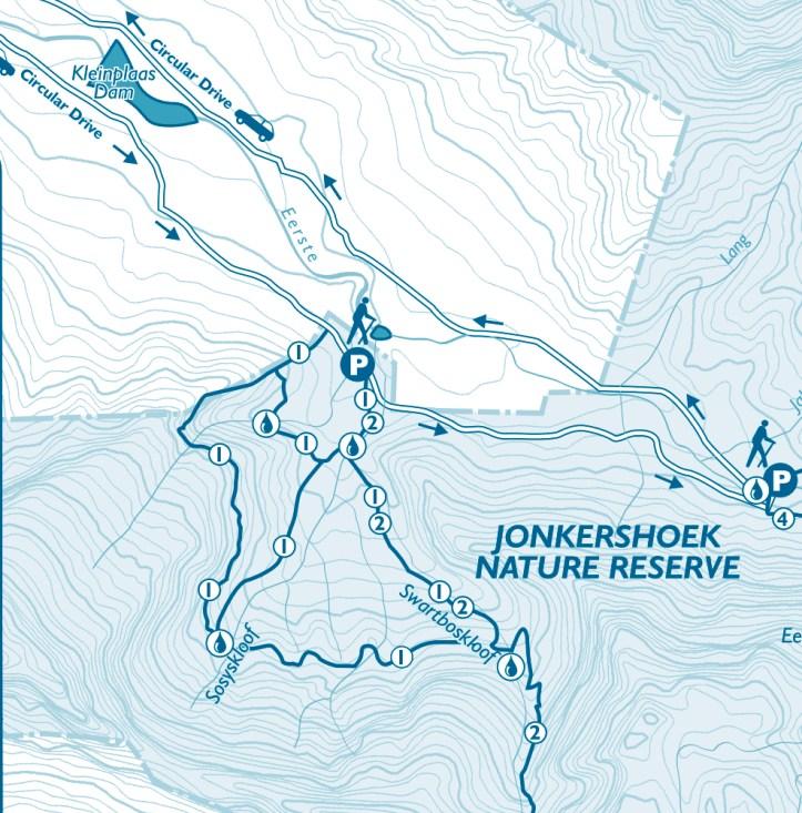 Walk in Jonkershoek Nature Reserve