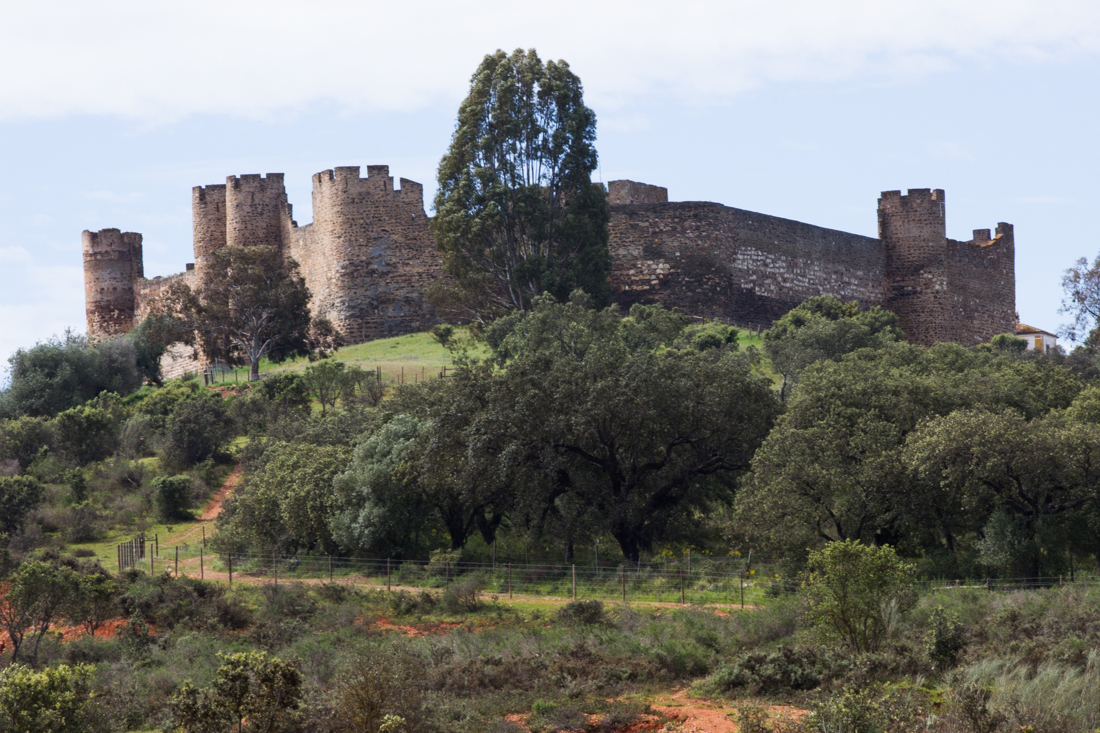 The Castle of Terena