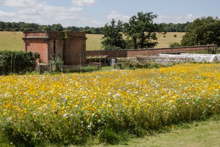 The Walled Garden, Ickworth House