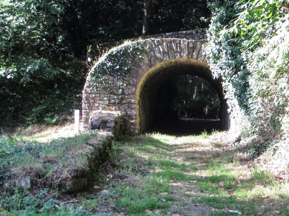 Odd bridge in Bois de Roscoure