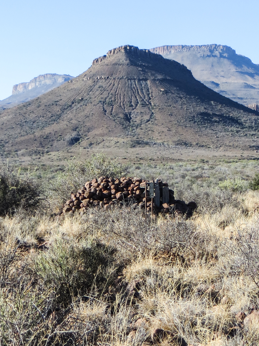 Snare in the Karoo National Park