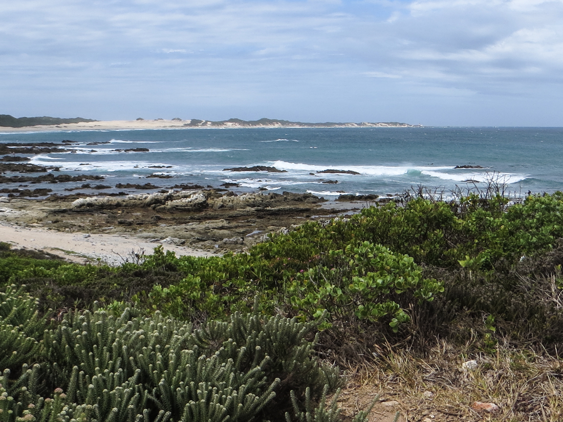 Looking towards Cape Receife Nature Reserve