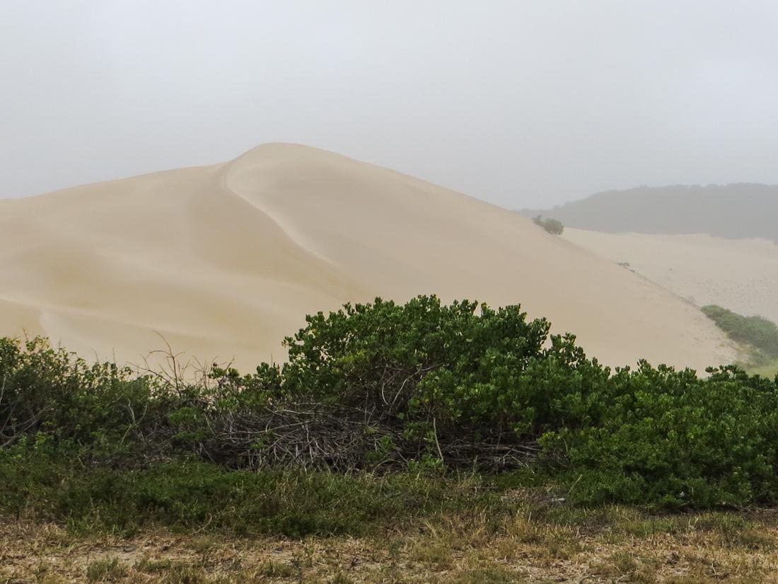 Maitlands Beach