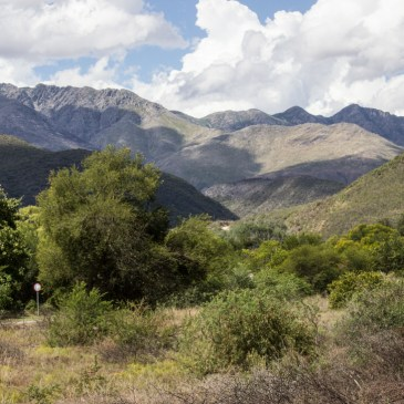 Around the Cango Caves in the Swartberg Mountains