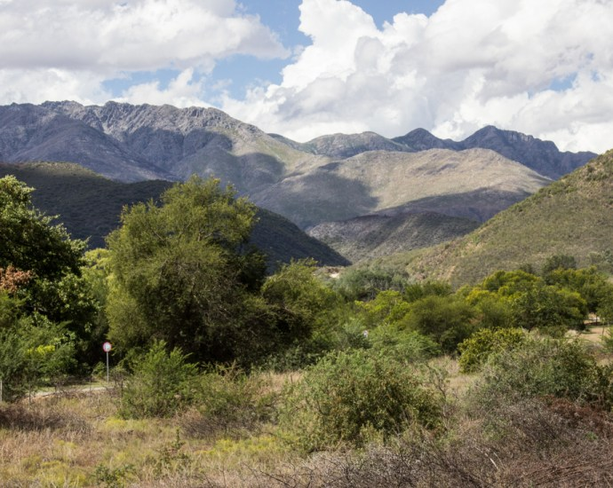 The road from Oudtshoorn to the Cango Caves