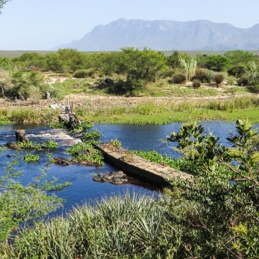 Walking in the Bontebok National Park, Swellendam