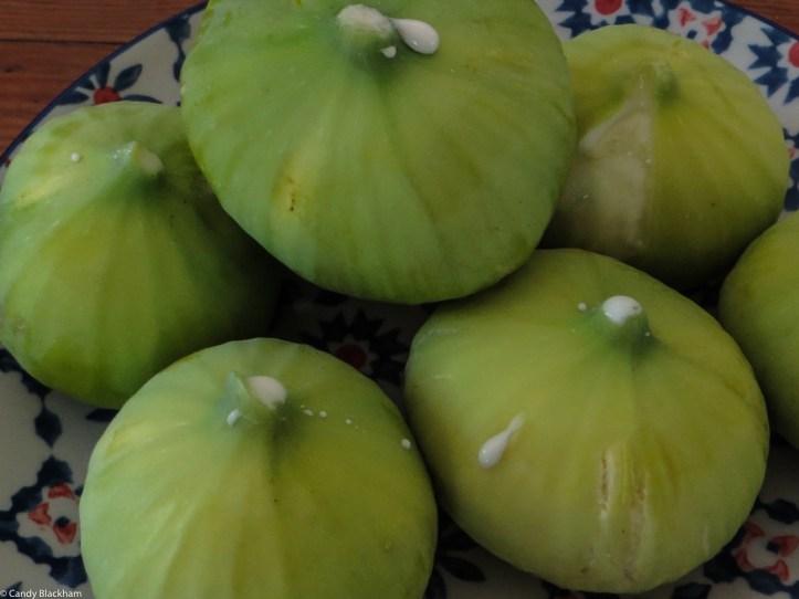 Figs in Swellendam