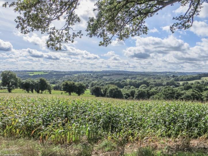 The countryside around Plouye