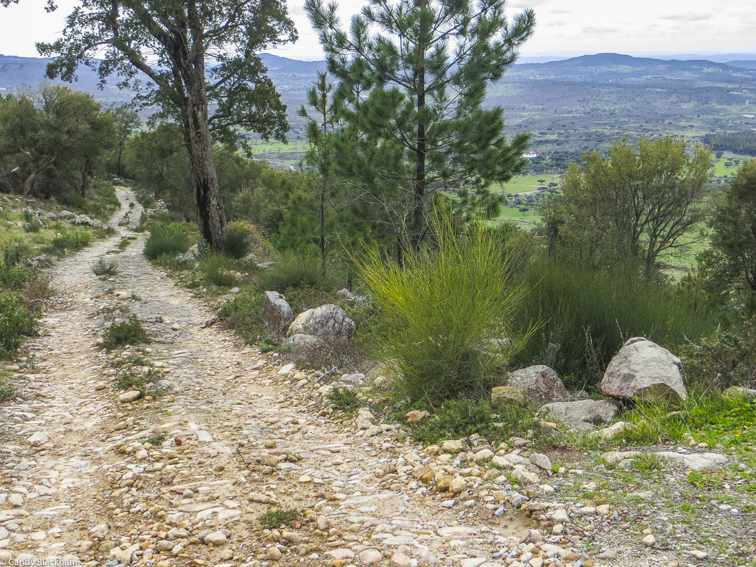 Looking back down the Mediaeval Road, Carreiras