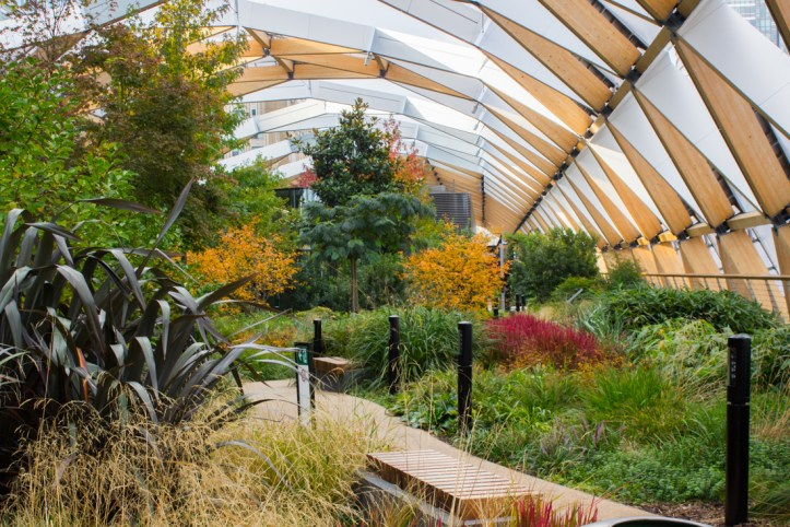 Crossrail Roof Garden in Autumn