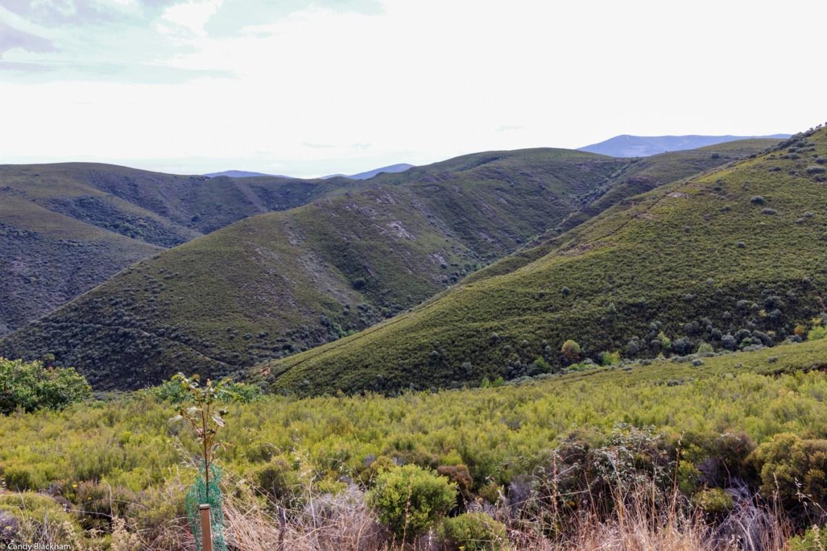 Las Medulas gold mines