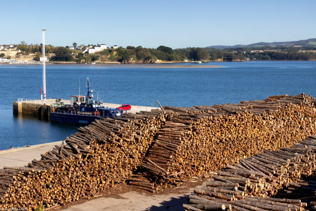 Loading timber in Ribadeo