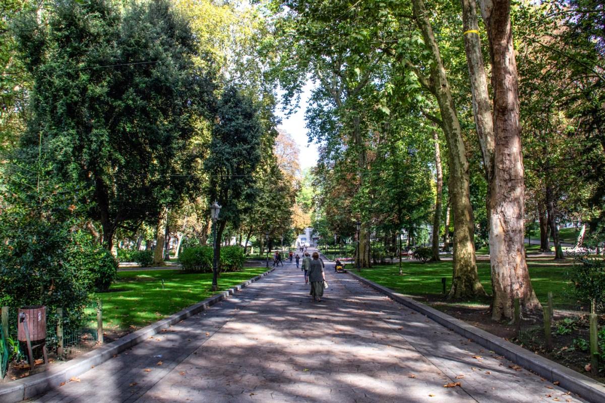 The Avenue de Almania in the Park of San Francisco