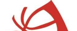 cropped-united-logo11.png