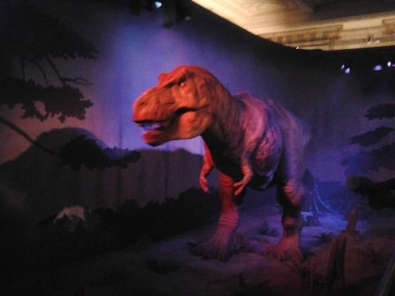 natural history museum img0007