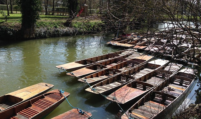 oxford punting