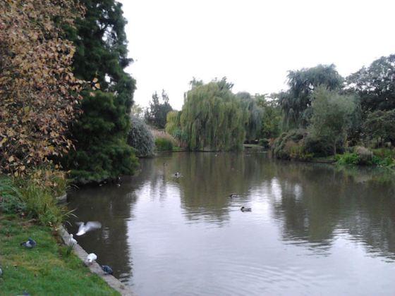 regents park image 004