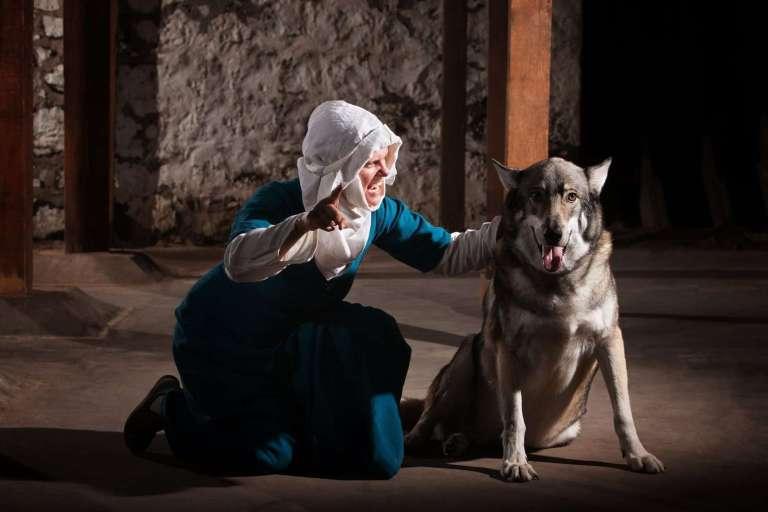 3852581_nun-talking-to-dog