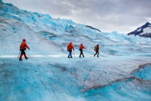 Mendenhall Glacier Juneau Usa Attractions - Lonely Planet