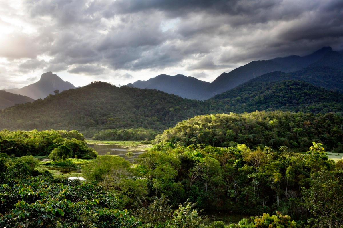 Minas Gerais travel | Brazil - Lonely Planet