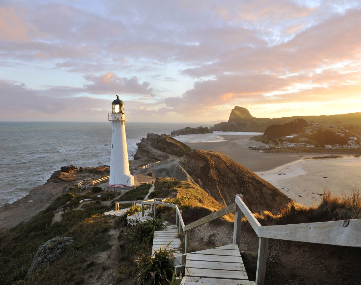 Wellington Travel Zealand - Lonely Planet