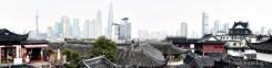 Growth Shanghai