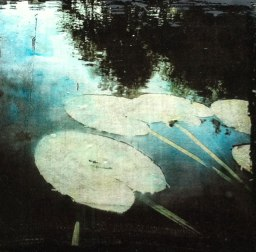 gilding on panel with photography Maine