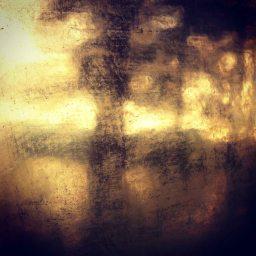 Hewnoaks reflection, 2014