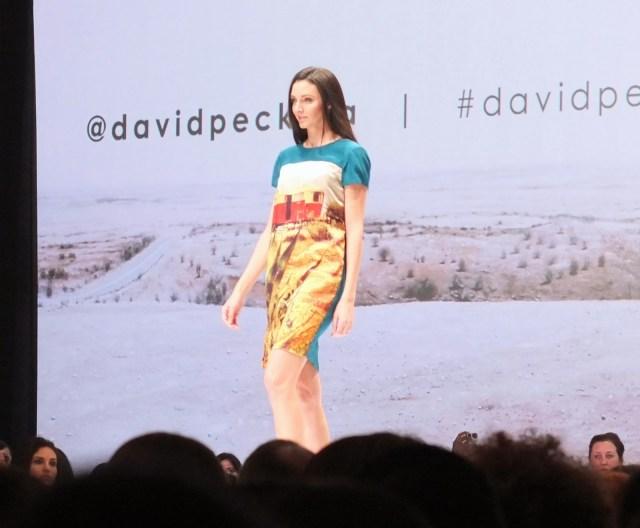 david peck fashion houston five, david peck mini dress, david peck fashion houston
