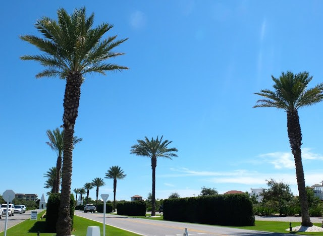 Alys Beach Florida, Alys Beach 30 A, Guide to Alys Beach, What to do in Alys Beach, Shopping in Alys Beach