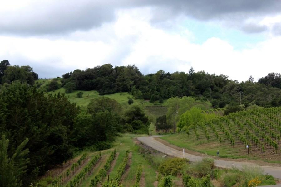 Sonoma_California_Travel_Guide29