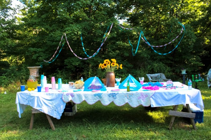 Southern_Gender_Reveal_Party1