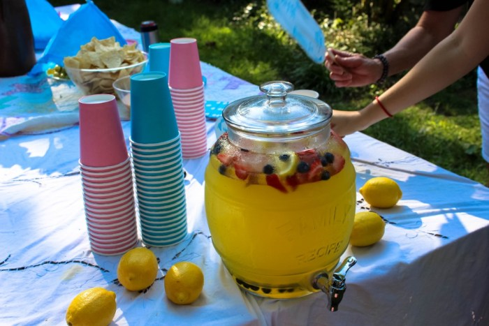 Southern_Gender_Reveal_Party3