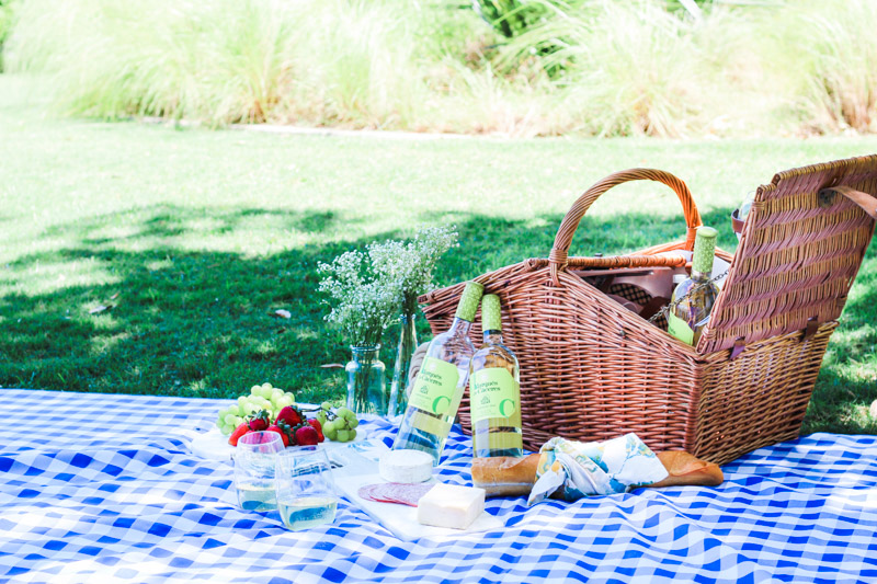 Picnic_in_the_Park-3