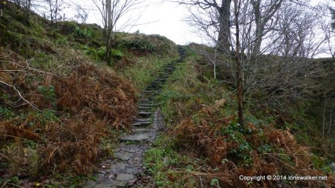 Path beside Crowden Brook