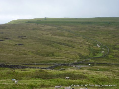 Wold Fell