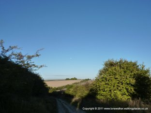 """Looking back down the first """"hill"""" of the day - moon in the sky"""