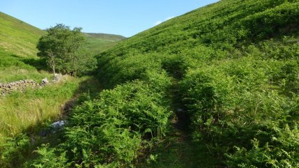 The start of the thin path up Jaggers Clough