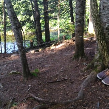 Appalachian Trail S01E127